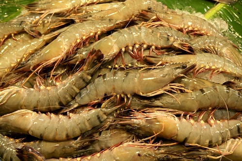 Shrimps for sale at a local fish market in Khulna, Bangladesh. Photo by M. Yousuf Tushar. April 17, 2014