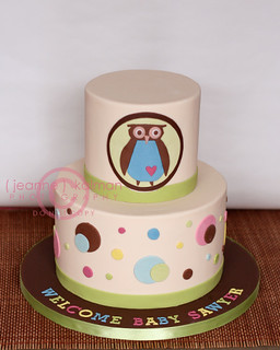 Owl Baby Shower... | by The Well Dressed Cake