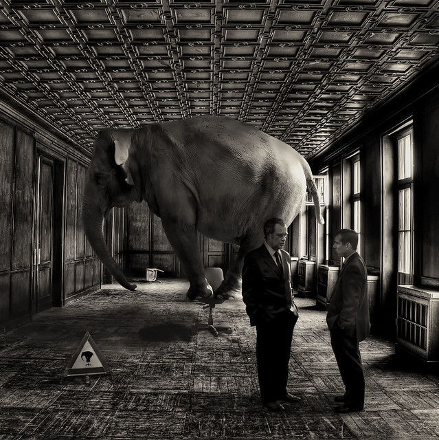 Afterwards Tom and Eric weren't exactly sure at which point during their discussion the elephant had entered the room