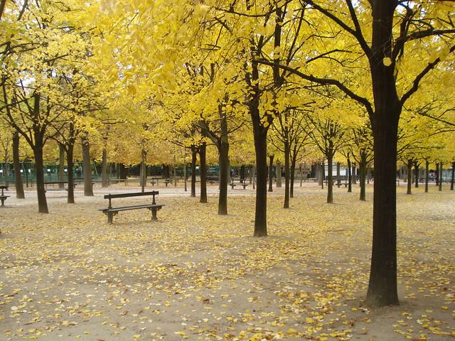 Automne du Jardin du Luxembourg