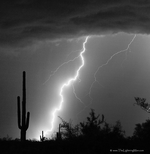 Lightning Strike in Black and White | by Striking Photography by Bo Insogna