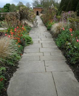 Leading you up the garden path! | by Sue Hasker - Apologies to my followers for my rece