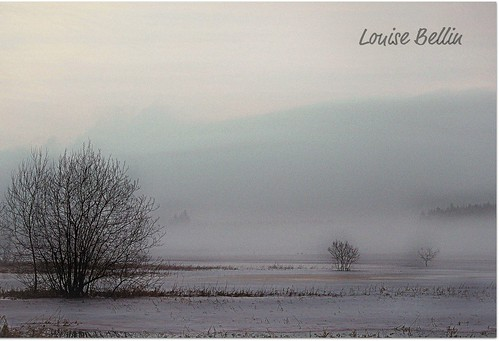 The Mist Conceals All | by Louise Bellin
