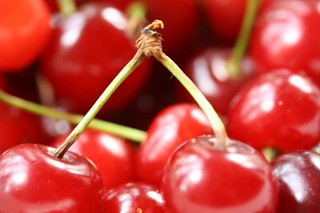 Sour Cherries | by davidzschiller