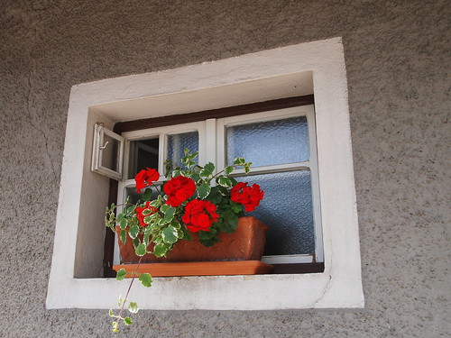 Window...s! - Finestr...e! | by SissiPrincess