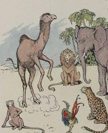 Camelus et Simia