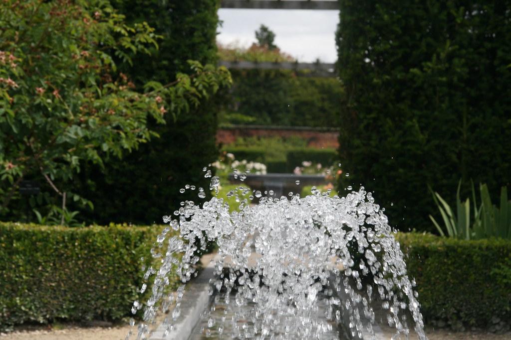 Paradise Garden Alnwick That Hides A Poisonous Secret