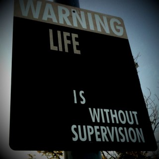 Warning: Life Is Without Supervision (a de-sign) | by Austin Kleon