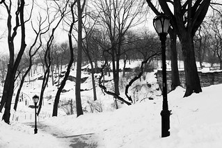 Central Park, in winter | by Kim | Affairs of Living