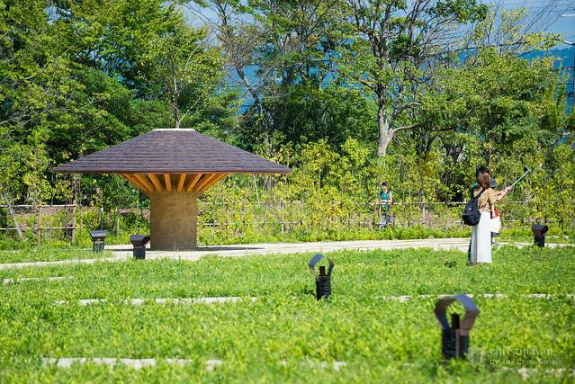 La Collina Omihachiman in garden (ラ・コリーナ近江八幡)