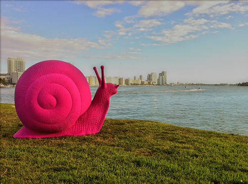 Pink Snails - Art Basel | by miamism
