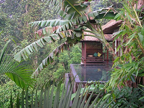 Personal plunge pool, Panoramic Pool Villa, Ubud Hanging Gardens, Bali, Indonesia | by Robin Queen of Travel