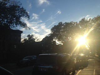 Brooklyn: Autumn Atmosphere