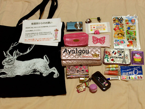 What's in my bag? April 18 | by aya1gou
