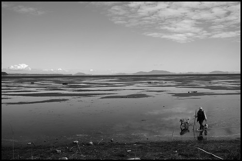 Man and dog wading in Mud Bay | by Eric Flexyourhead (shoulder injury, slow)