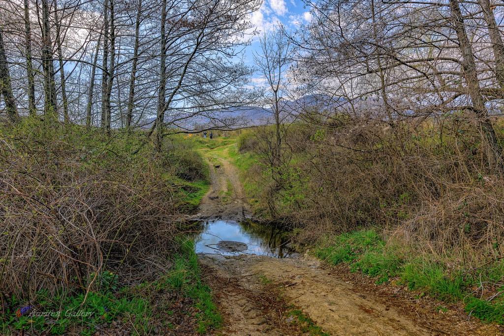 Rural road (re-edit)