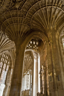 Peterborough Cathedral ceiling  long exposure 1 | by Michael Earley