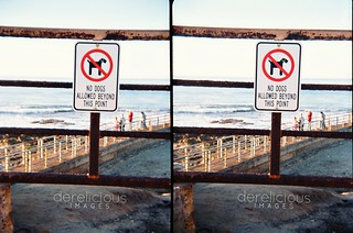 No Dogs Allowed | by JevonDerrick