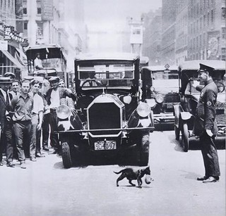 Mother cat stops traffic 1925 | by Art & Vintage