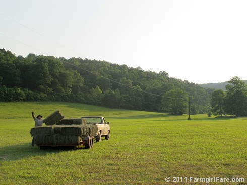 Throwing the last bale of hay onto the trailer | by Farmgirl Susan