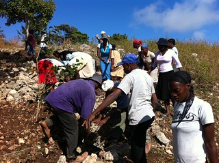 Rebuilding Haiti - 3 | by United Nations Development Programme