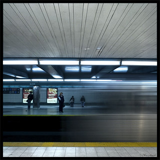 Bloor Line | by sigma.