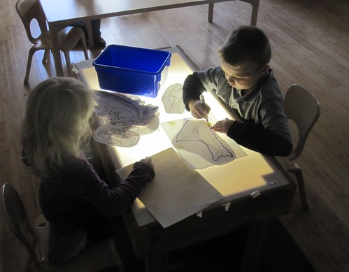 tracing sea creatures on the light table