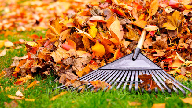 Home Maintenance Tasks You Need to Tackle in November