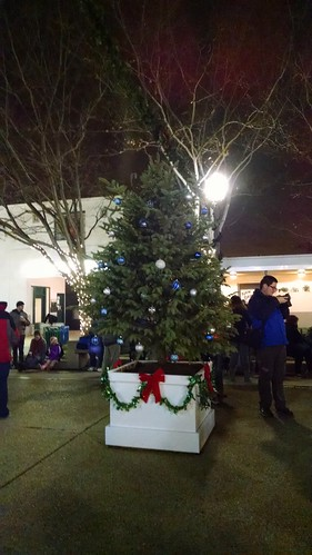 At the opening ceremony of the Greenbelt Festival of Lights. The tree is waiting to be lit.