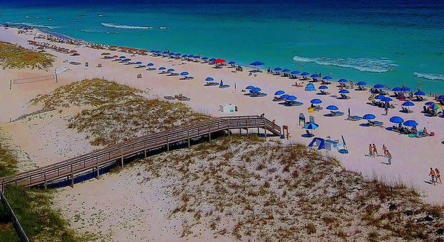 ~Florida~ - The Sunshine State