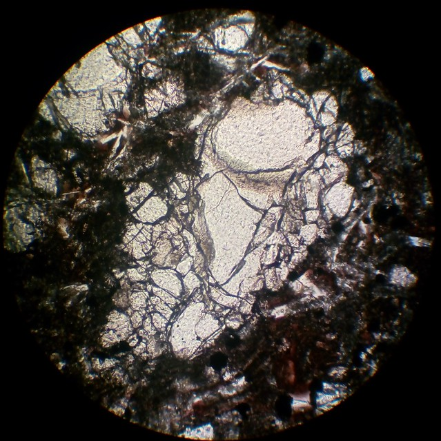 Olivine (30 µm thin section, PPL)