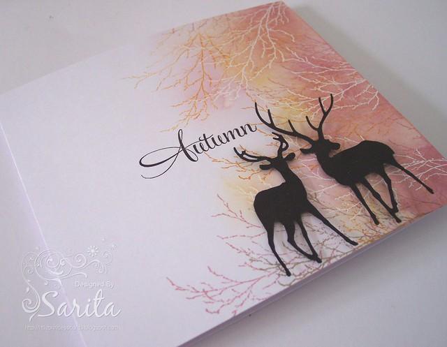 Autumn 1b
