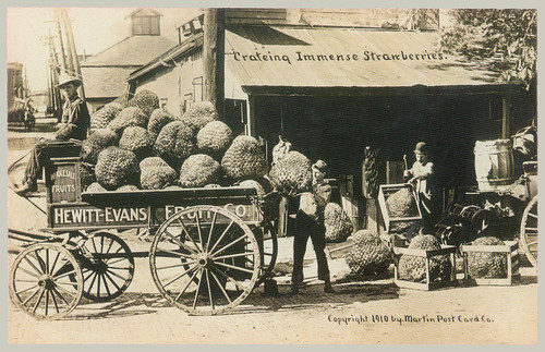 "Example of William H. ""Dad"" Martin Exaggerated Postcard"