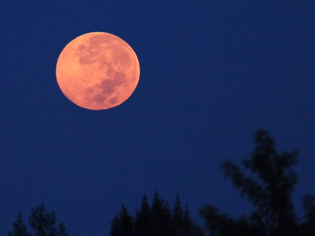 Harvest Moon setting 20130919