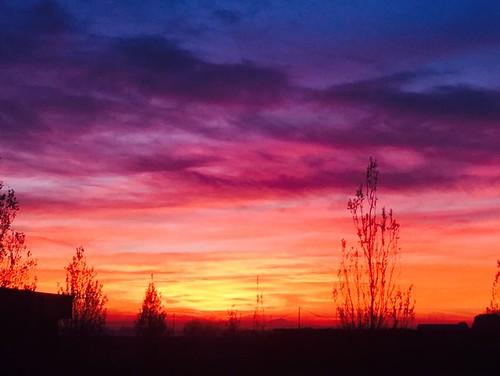 Sunset 01/12/2016
