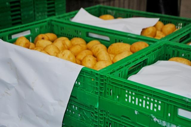 potatoin Italy