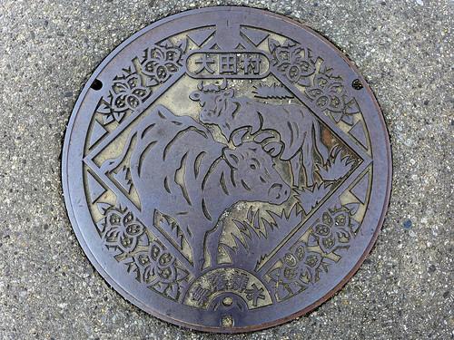Ota Oita, manhole cover 3 (大分県大田村のマンホール3)