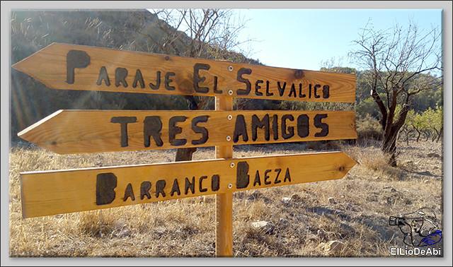 Ruta de la Mineria de Bédar (5)