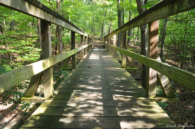 Meditate Bridges