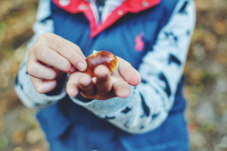 autumn walk holding conker