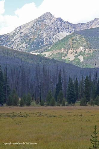 Kawuneeche Valley of the Colorado River