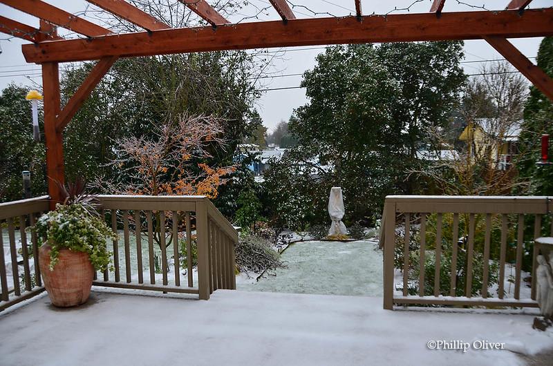 Snow & Ice, Vancouver, WA (12/9/16)