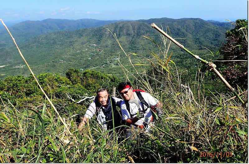 登頂豬老束前矮竹坡 2