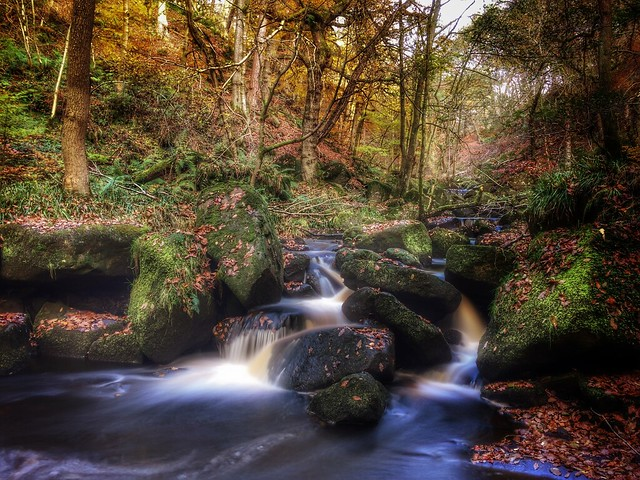 321/366 Padley Gorge, The Peak District.