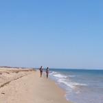 Playa. Flecha del Rompido