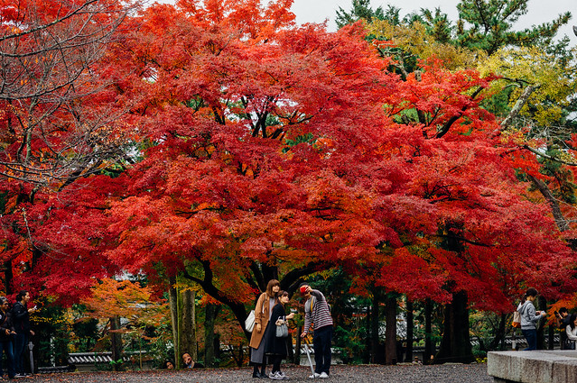 Kyoto_Nanzenji_05