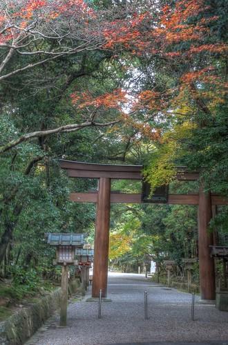 Isonokami Jingu Shrine on NOV 30, 2016 vol02 (25)