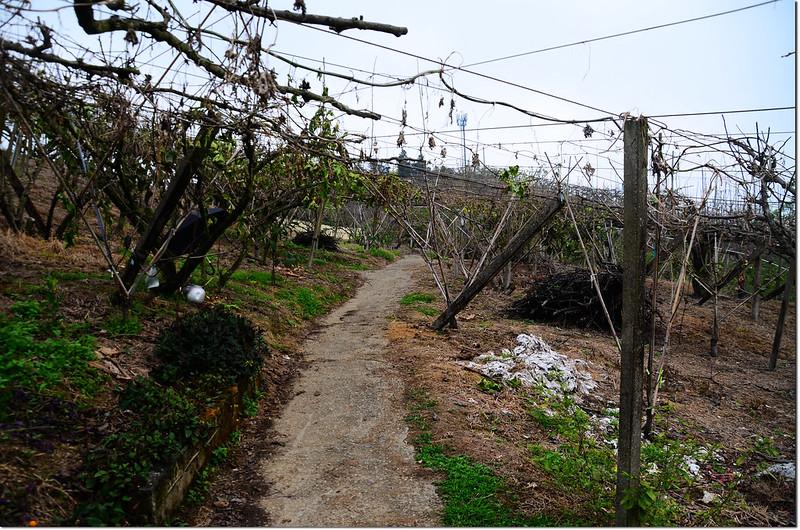 分桂林山登山步道