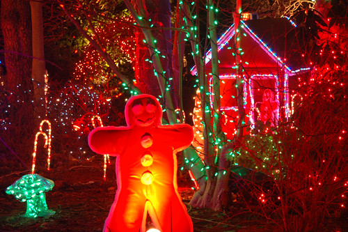 Van Dusen Garden Xmas lights display