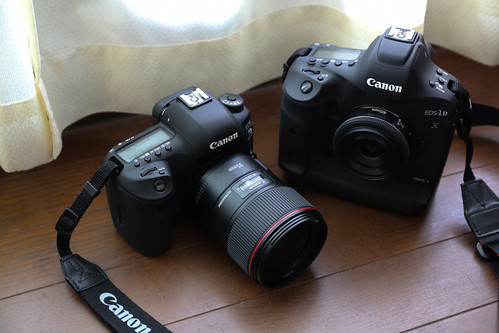 EOS-1D X Mark II & EOS 5D Mark IV